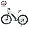New 500W Chinese Electric Mountain Bike