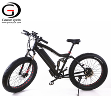 Full Suspension 1000W Fat Tire Electric Bicycle