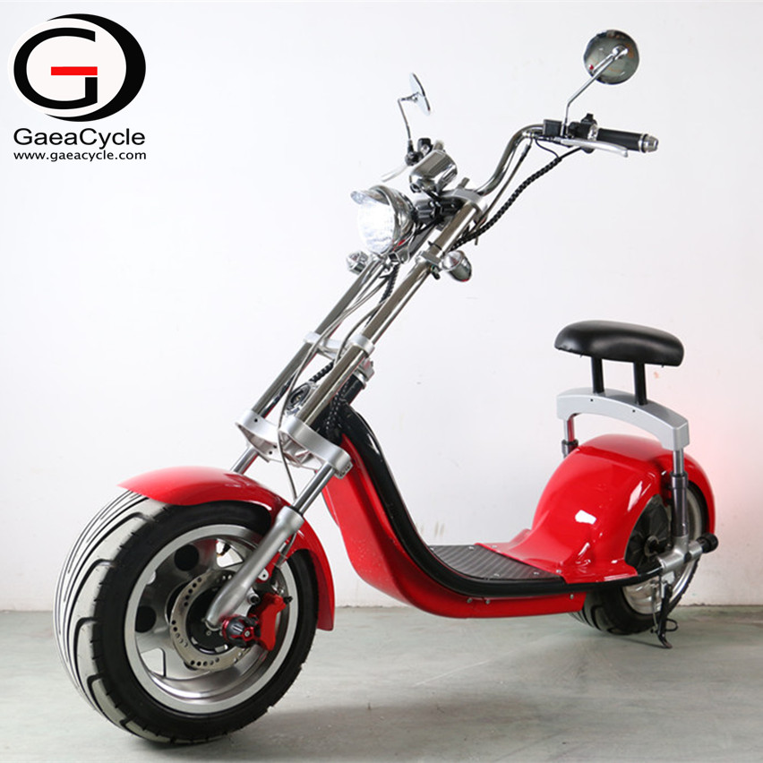 18*9.5 Fat Tire Electric Scooter Double Fork Citycoco