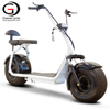 Two Seat Simple Citycoco Fat Tire Electric Scooter