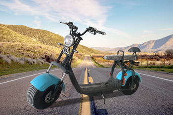 One container new EEC electric scooters will be shipped to Europe