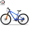 Cheap Price Electric Bicycle e mtb Mountain Sports Frey ebike 36V 250W Powerful Lightweight Bikes on Sale