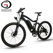Full Suspension 500W Mountain Electric Bicycle