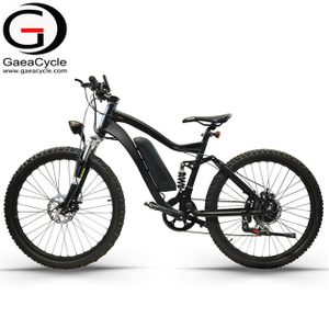 Full Suspension 250W Mountain Electric Bike