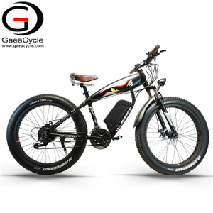 Fat Tire 500W Snow Beach Electric Bicycle