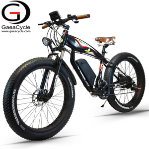 New Fat Tire 350W Snow Beach Electric Bike